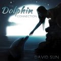 Relaxing Music: 'The Dolphin Connection' - Album Cover Image