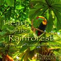 Relaxing Music: 'Heart of the Rainforest' - Album Cover Image