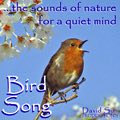 Sounds for Relaxation - Bird Song Image