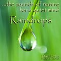 Sounds for Relaxation - Raindrops Image